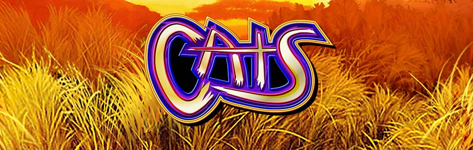 OddsKing Games Cats